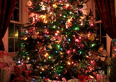 how to photograph a christmas tree2 390x275 - 2012 Christmas Tree Photography Contest